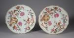 Pseudo tobacco leaf plate pair 1775